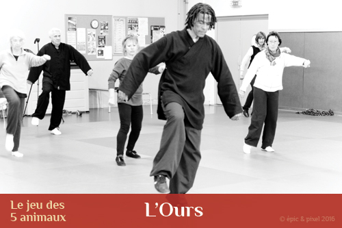 Qi gong des 5 animaux : l'ours